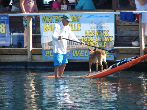 Bartlett Lake Paddle Boarding Lessons Amp Rentals Go Stand